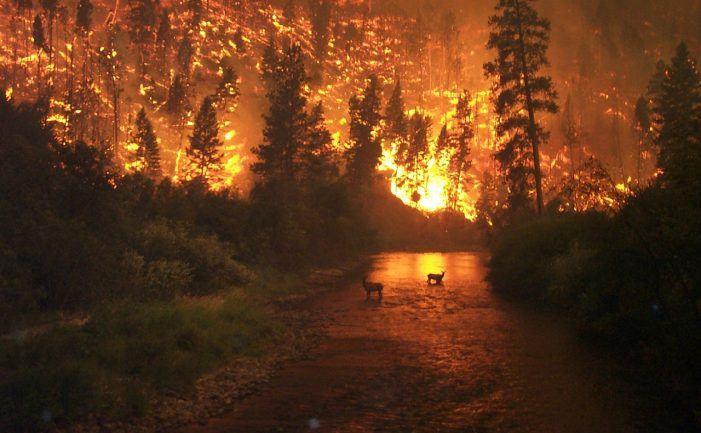 Schutz vor Naturkatastrophen