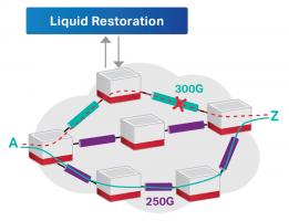 Liquid Restoration - Ciena LS