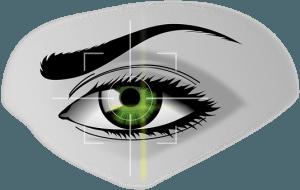 biometrics-154660__340