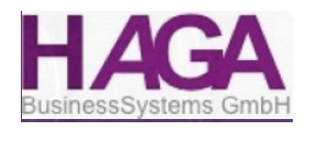 Haga-Business-Systems