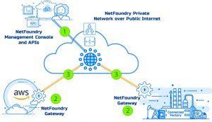 NetFoundry AWS Grafik